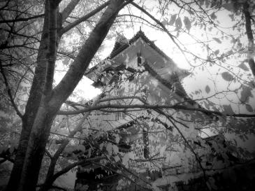Kanazawa Rooftop (Digital Infrared)