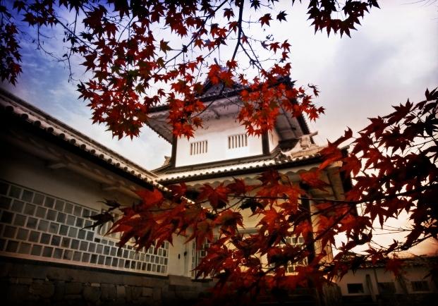 Kanazawa Colors