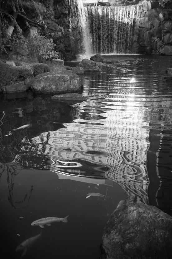 New Otani Falls (Digital Infrared)