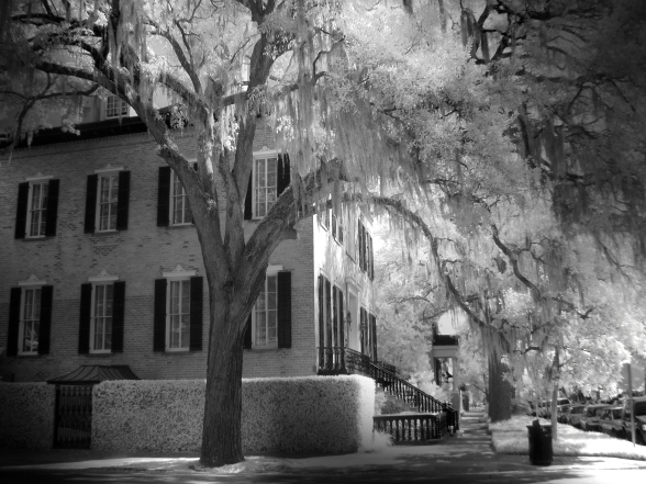 Savannah Street Corner (Infrared)
