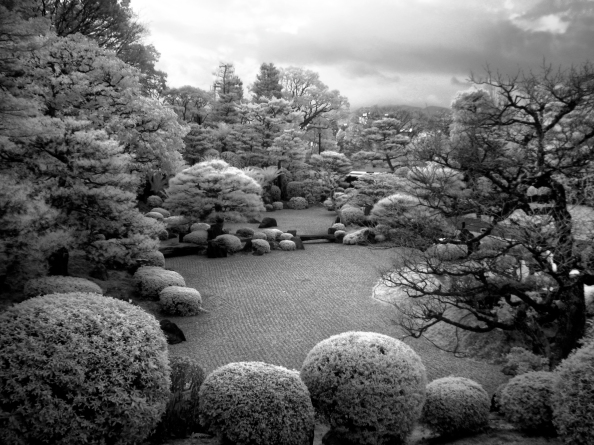 Stone Garden (Digital Infrared)
