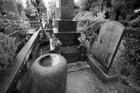 Tokyo Grave on a Rainy Day