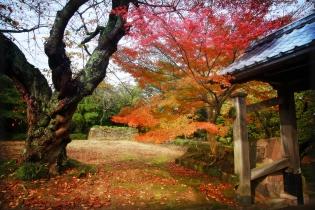 Fall Colors at Kanzawa