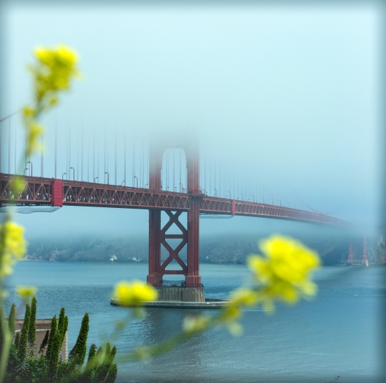 Golden Gate View #4